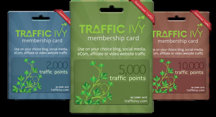 Traffic Ivy Logo
