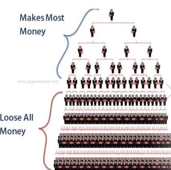 Ariix pyramid scheme structure